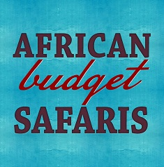 African Adventure blogs 2019 africanbudgetsafaris.com