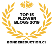 Banners for Top 15 Flower Blogs 2019